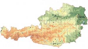 Verbreitung in Österreich (Quelle: ÖGH)
